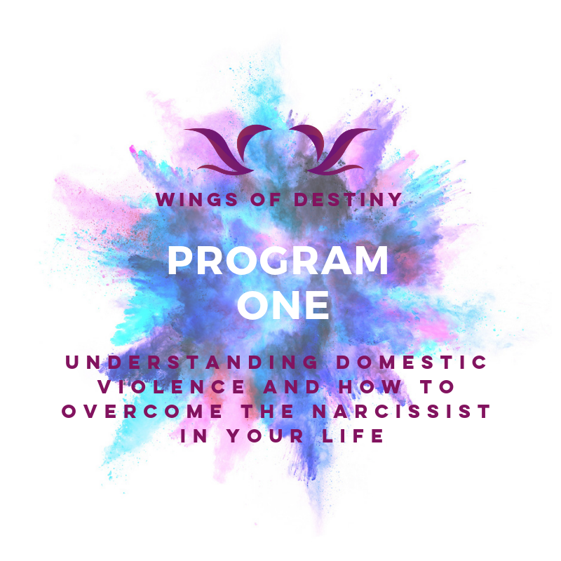 Program 1 |  DESTINED TO BE ME
