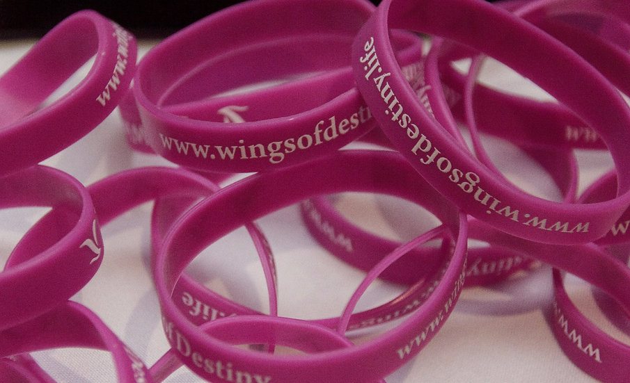 Wings of Destiny - Wristband