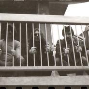 Behind bars!