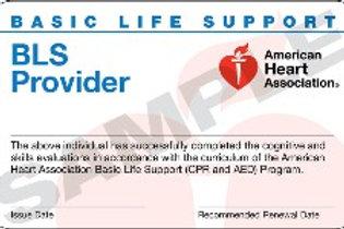 BLS Provider/BLS Healthcare Provider (Small in person class)
