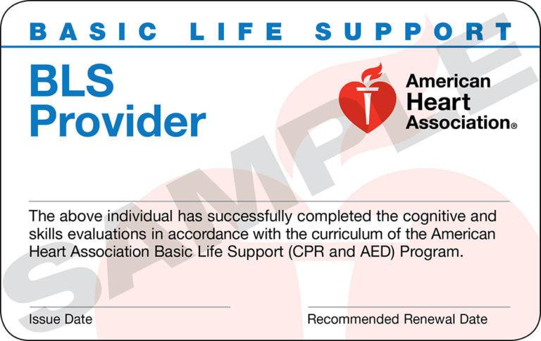 BLS Provider - In Person