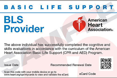 BLS for Healthcare Provider Hands on testing only