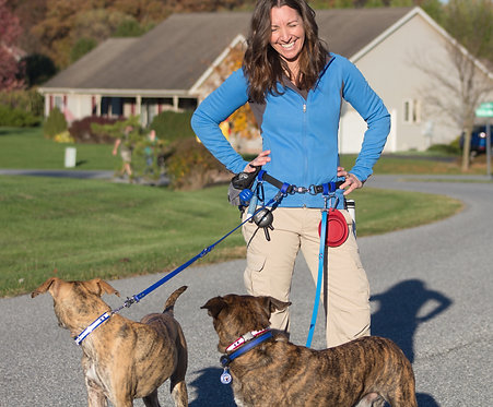 Adjustable Multi-Dog Waist Walker Belt