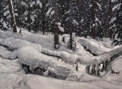 Wintery Quietude