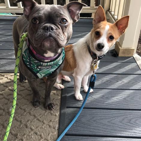 Beatrice & Georgie