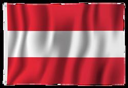 DieWerbedrucker-Dekorfahne