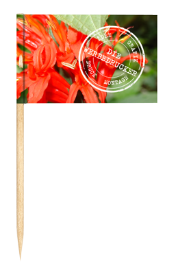 DieWerbedrucker-Zahnstocherfahne-Logot
