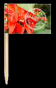 DieWerbedrucker-Zahnstocherfahne-Logot.p