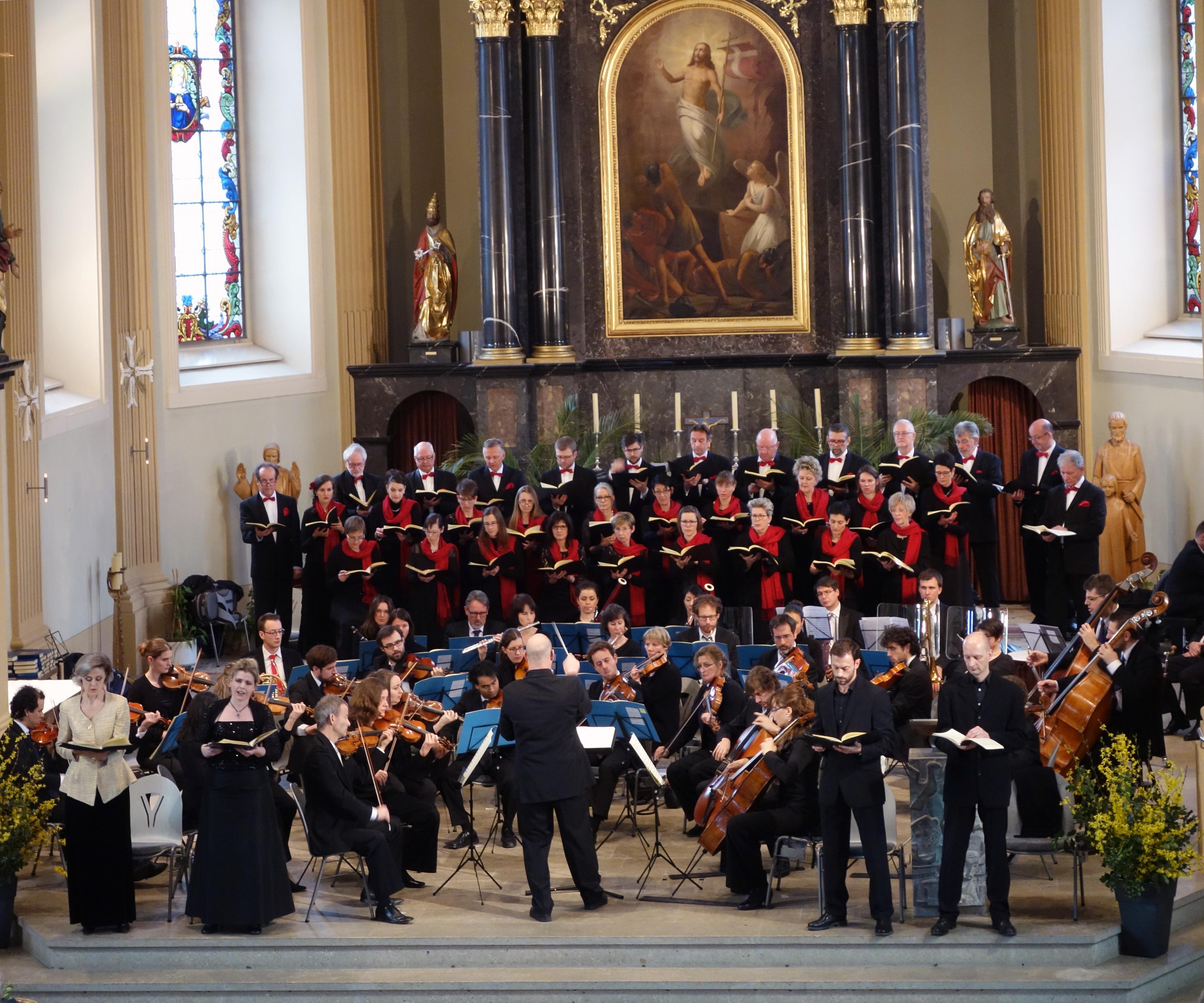 Haydn 2015