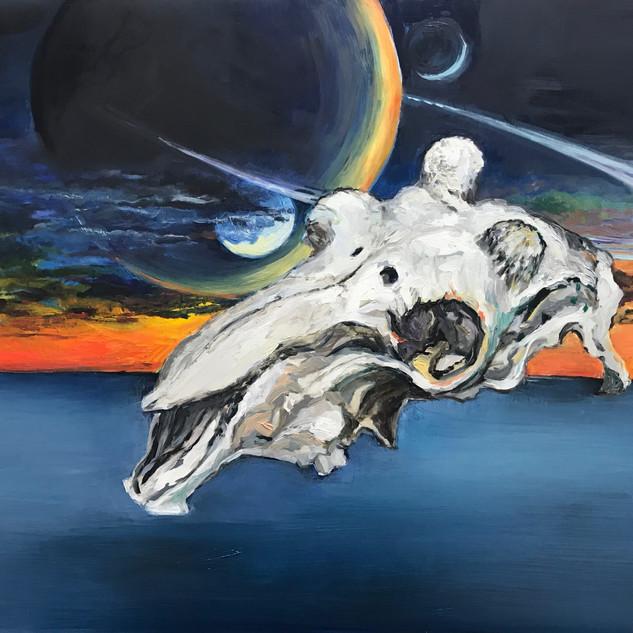 goat skull #2