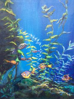 Fishies in Toronto