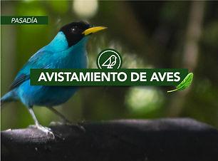 Viajes-Che-Avitamiento-Aves-Valle-del-Ca
