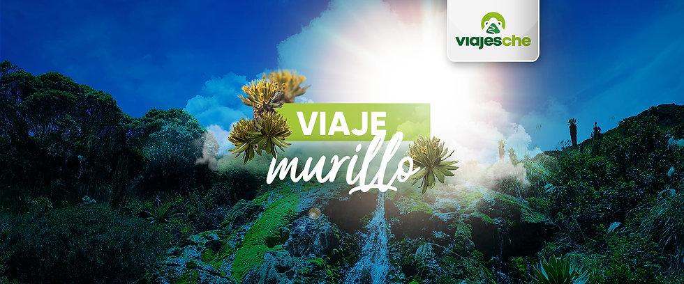 Banners-Viajes-Che-Virtual---Murillo.jpg