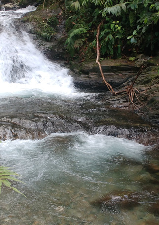 Viajesche-reserva-natural-Pericos04.jpg