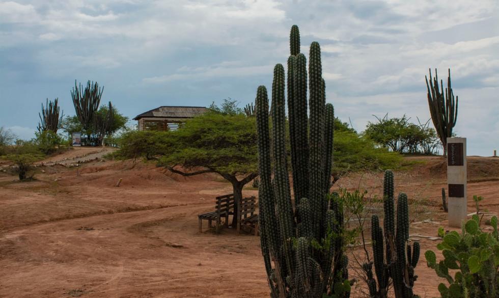 Desierto de la Tatacoa-viajes che-0012.J