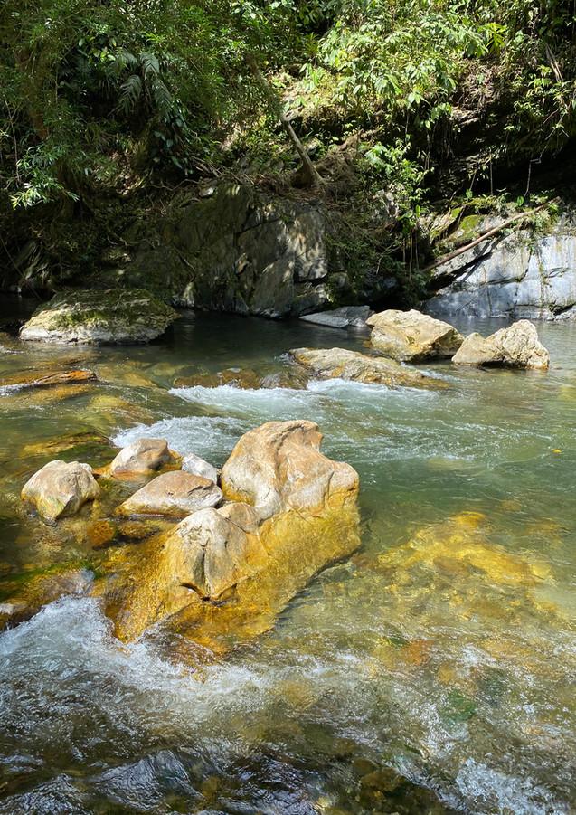 danubio y anchicaya valle del cauca- via