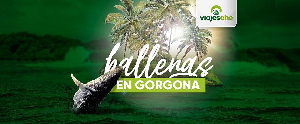 Banners-Pieza-Viajes-Che---Isla-Gorgona-