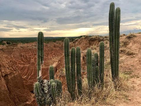 desierto de la tatacoa-viajesche-06.jpg