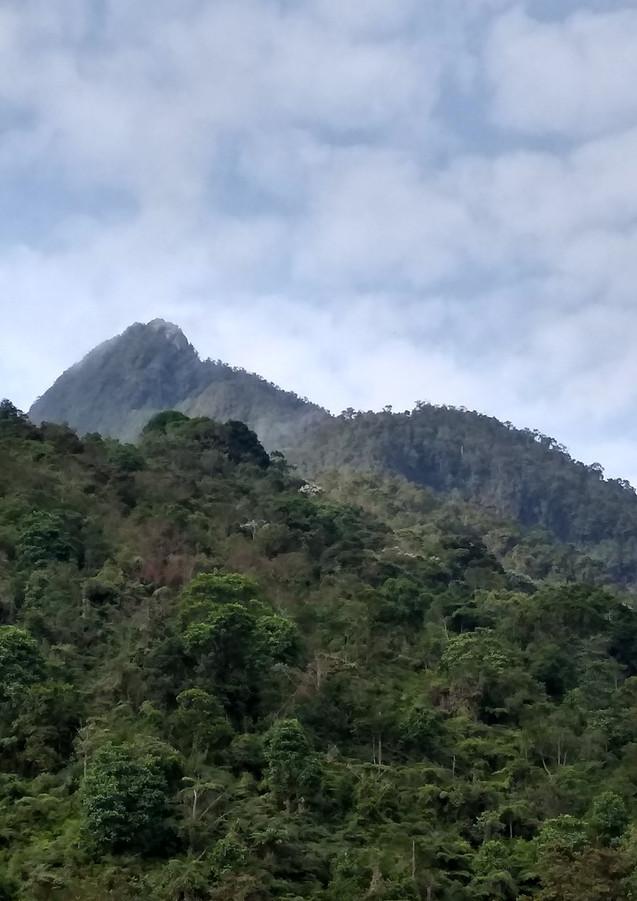 pico-de-loro-viajes-che-valledelcauca 01