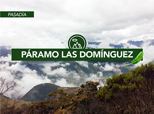 Viajes Chr-Páramos-Las-Domínguez-Valle