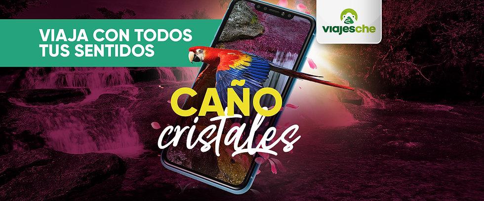 Banners-Viajes-Che-Virtual---Caño-Crista