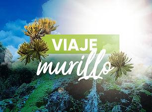 Imagenes-Viajes-Che-Virtual---Murillo.jp