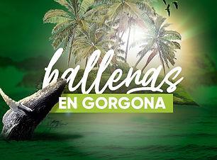 Imagenes-Viajes-Che-Virtual---Gorgona 2.