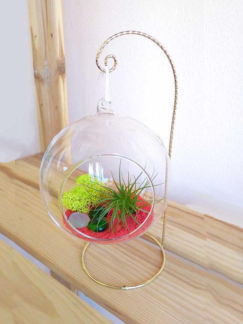 Подвесной флорариум-шар