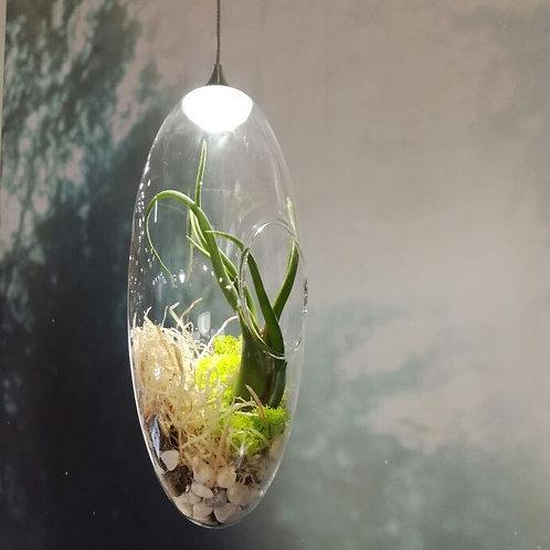 Светильник-флорариум