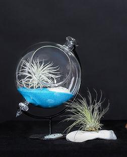 флорарум глобус