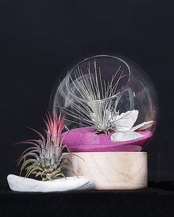 флорариум шар