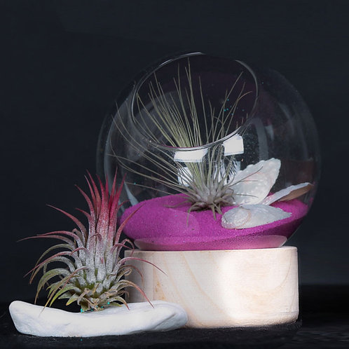 Флорариум шар на деревянной подставке