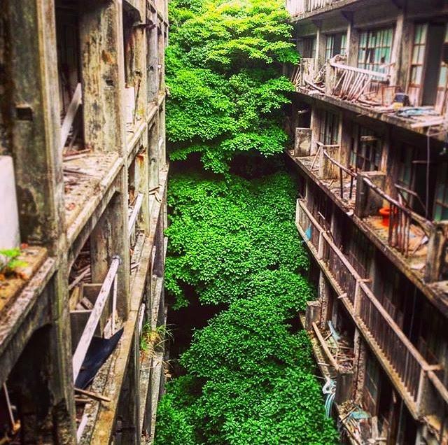 Abandoned homes of Gunkanjima