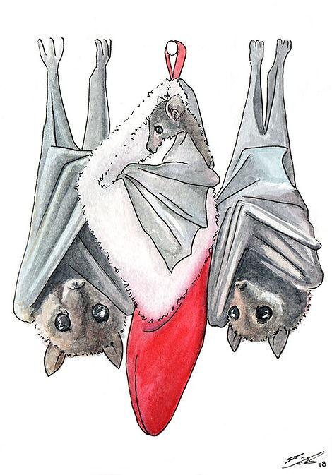 03 Fruit Bats.jpg