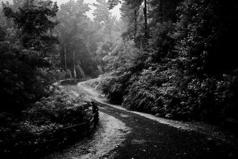 The Black Path.jpg