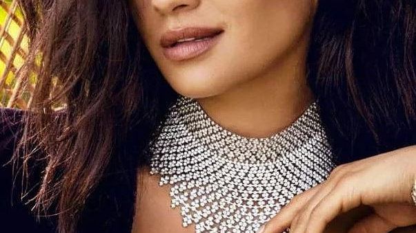 Beautiful silver chocker necklace