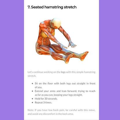 seated hamstring.jpg