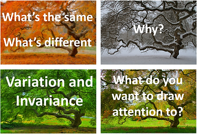 variation trees.PNG