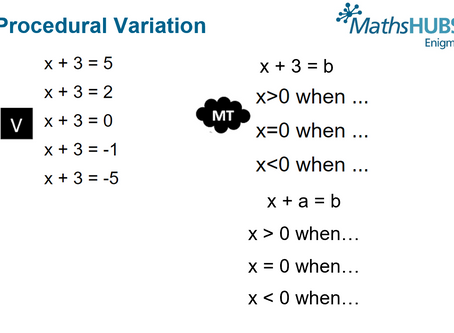 Variation and Mathematical Thinking