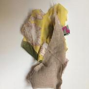 Débris de chrysalide jaune 1