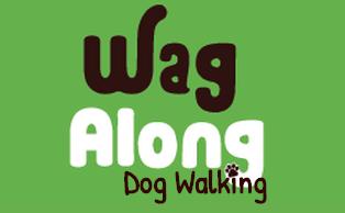 Dog walker in boston.png