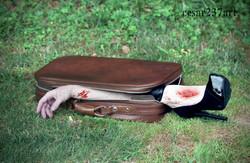 Suitcase Case