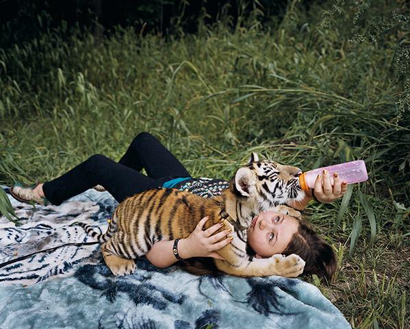 Y tú, ¿alimentas al pequeño tigre?