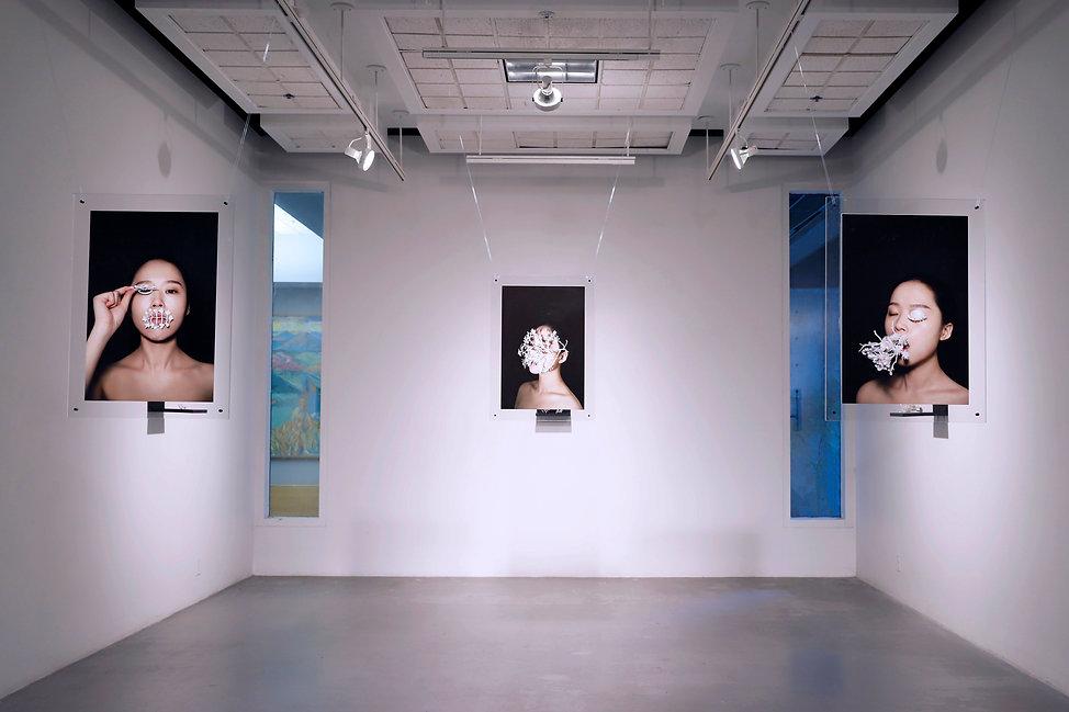 BFA Installation Image.jpg