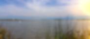Screen Shot 2019-07-09 at 11.56.43 PM.pn