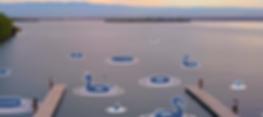 Screen Shot 2019-07-09 at 11.57.08 PM.pn
