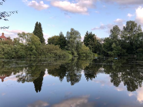 J Earley: South Pond