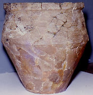 Bronze Age beaker found in Little Shore Lane