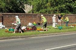 Sat 23rd May: Planting Day