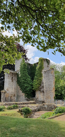 A Roughton: Leafy palace ruins on a sunny day